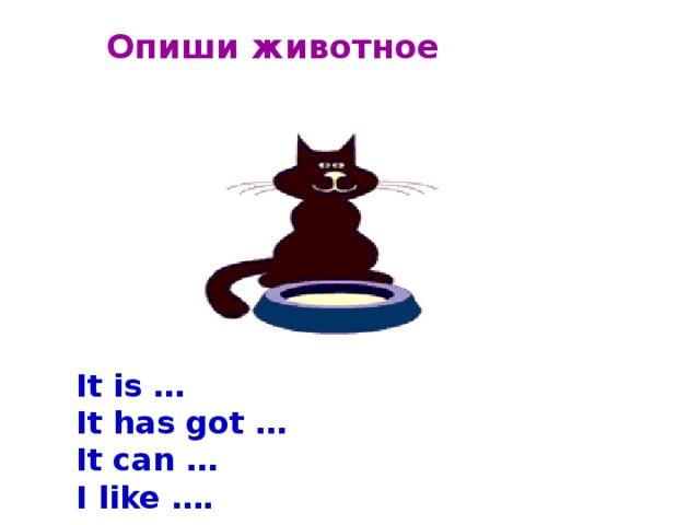 Опиши животное   It is …  It has got … It can … I like ….