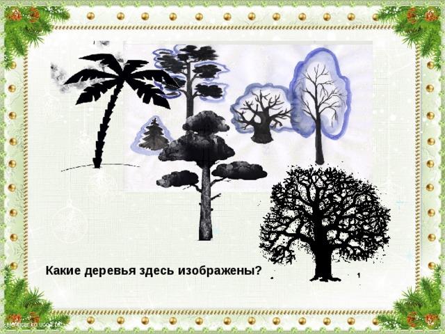 Какие деревья здесь изображены?