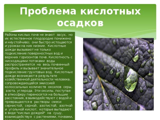 Проблема кислотных осадков Районы кислых почв не знают засух, но их естественное плодородие понижено и неустойчиво; они быстро истощаются и урожаи на них низкие. Кислотные дожди вызывают не только подкисление поверхностных вод и верхних горизонтов почв. Кислотность с нисходящими потоками воды распространяется на весь почвенный профиль и вызывает значительное подкисление грунтовых вод. Кислотные дожди возникают в результате хозяйственной деятельности человека, сопровождающейся эмиссией колоссальных количеств оксилов серы, азота, углерода. Эти оксилы, поступая в атмосферу переносятся на большие расстояния, взаимодействуют с водой и превращаются в растворы смеси сернистой, серной, азотистой, азотной и угольной кислот, которые выпадают в виде