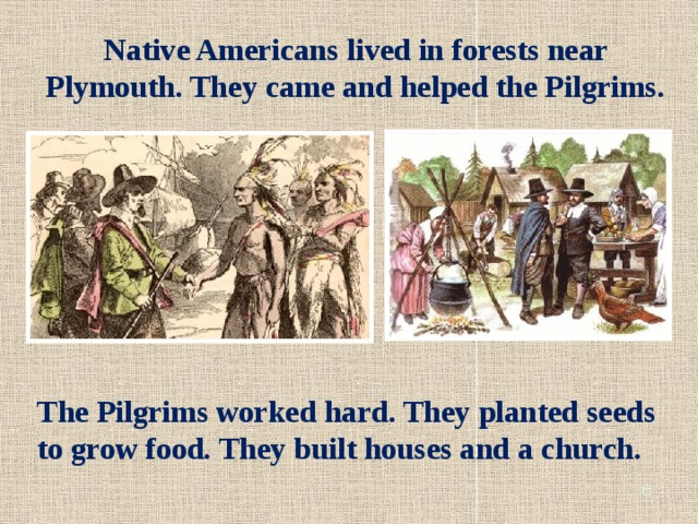 Native Americans lived in forests near Plymouth. They came and helped the Pilgrims. The Pilgrims worked hard. They planted seeds to grow food. They built houses and a church.