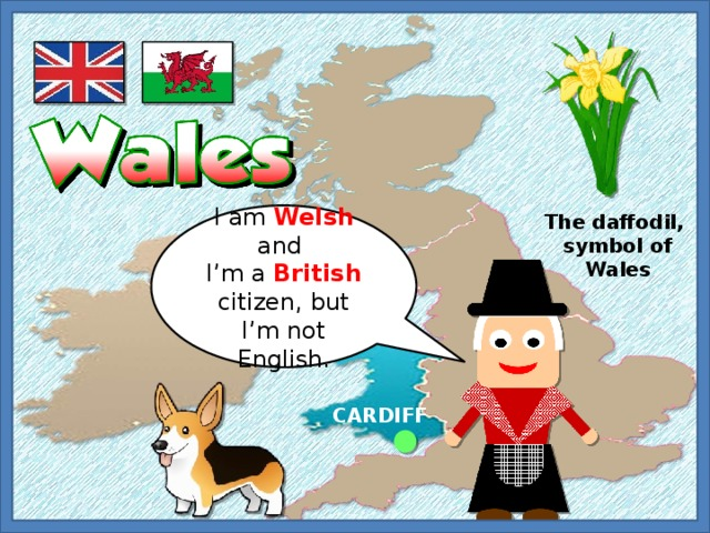 I am Welsh and The daffodil, I'm a British citizen, but I'm not English. symbol of Wales CARDIFF