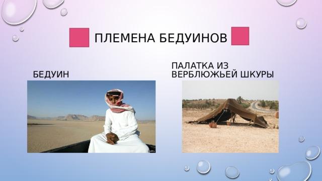 Племена бедуинов Бедуин Палатка из верблюжьей шкуры