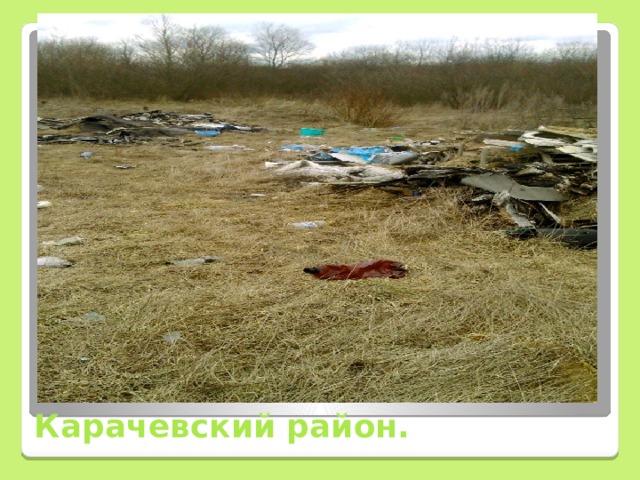 Карачевский район.