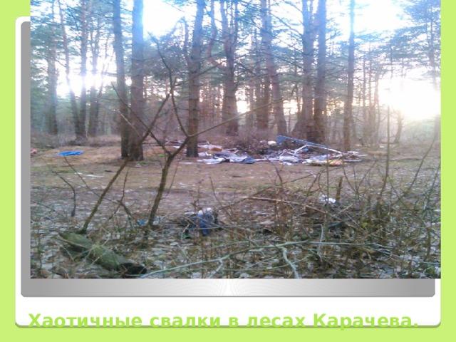 Хаотичные свалки в лесах Карачева.