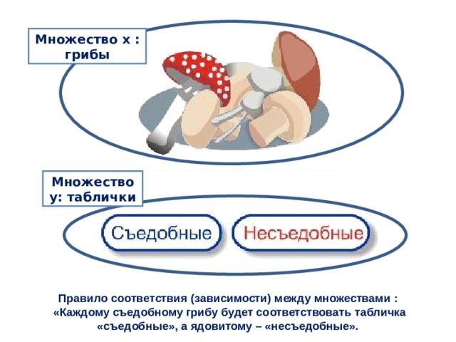 Множество х  : грибы Множество y : таблички Правило соответствия (зависимости) между множествами :  «Каждому съедобному грибу будет соответствовать табличка «съедобные», а ядовитому – «несъедобные».