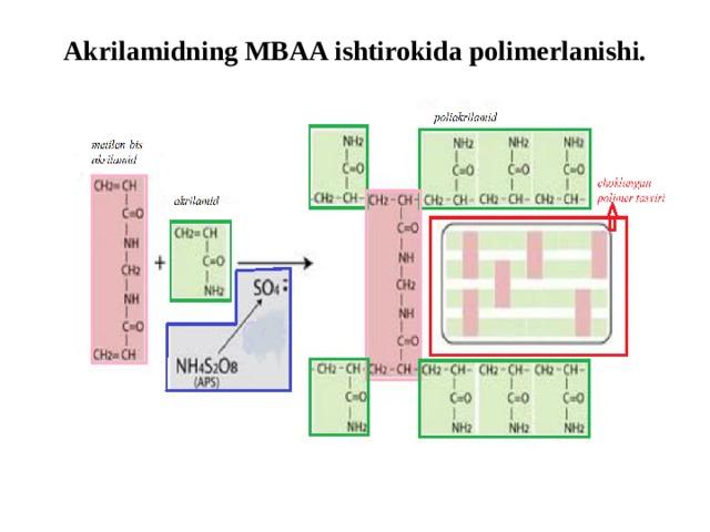 Akrilamidning MBAA ishtirokida polimerlanishi.