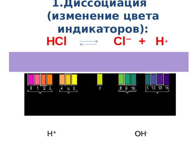 1.Диссоциация    (изменение цвета индикаторов): НС l   С l ⁻ + Н ⁺ СН 3 СОО - + Н ⁺ СН 3 СООН  ⁺ Нейтральная  Кислая среда Щелочная среда Н⁺ ОН -