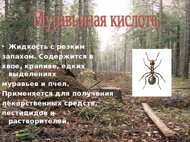 Жидкость с резким запахом. Содержится в хвое, крапиве, едких выделениях муравьев и пчел. Применяется для получения лекарственных средств, пестицидов и растворителей.