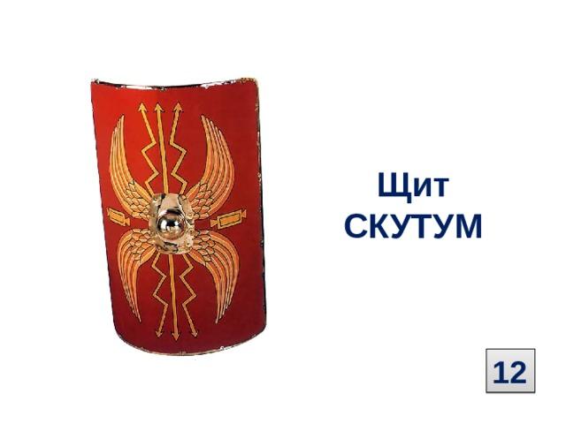 Щит  СКУТУМ 12
