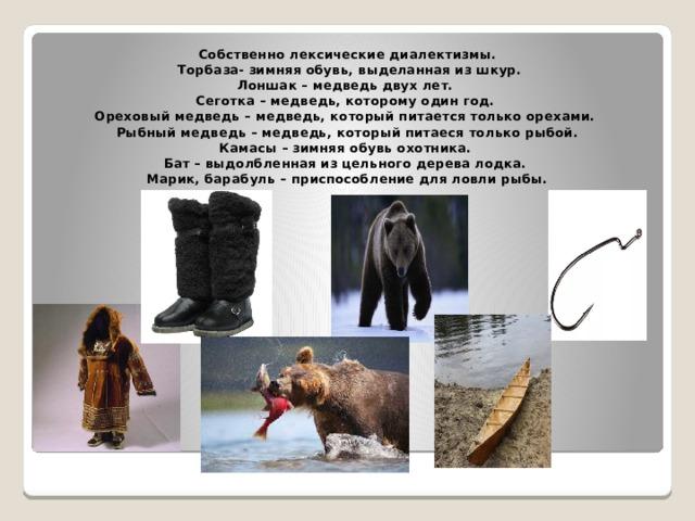 Собственно лексические диалектизмы.  Торбаза- зимняя обувь, выделанная из шкур.  Лоншак – медведь двух лет.  Сеготка – медведь, которому один год.  Ореховый медведь – медведь, который питается только орехами.  Рыбный медведь – медведь, который питаеся только рыбой.  Камасы – зимняя обувь охотника.  Бат – выдолбленная из цельного дерева лодка.  Марик, барабуль – приспособление для ловли рыбы.