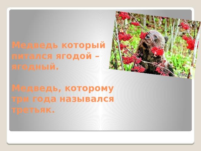 Медведь который питался ягодой – ягодный.   Медведь, которому три года назывался третьяк.