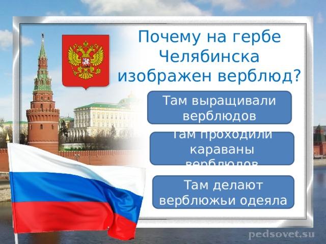 Почему на гербе Челябинска изображен верблюд? Там выращивали верблюдов Там проходили караваны верблюдов Там делают верблюжьи одеяла
