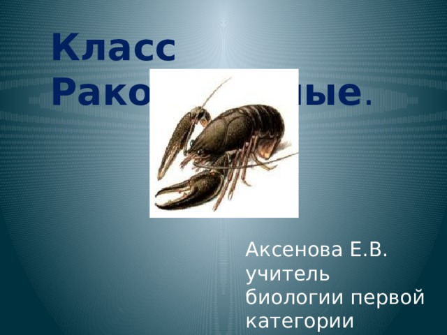 Класс Ракообразные . Аксенова Е.В. учитель биологии первой категории