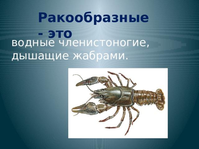 Ракообразные - это водные членистоногие, дышащие жабрами.