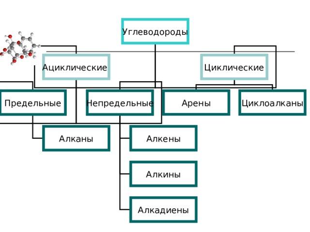 Углеводороды Циклические Ациклические Предельные Непредельные Арены Циклоалканы Алканы Алкены Алкины Алкадиены