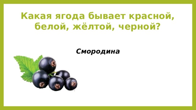 Какая ягода бывает красной, белой, жёлтой, черной? Смородина