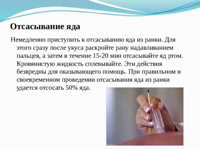 Отсасывание яда Немедленно приступить к отсасыванию яда из ранки. Для этого сразу после укуса раскройте рану нaдaвливанием пальцев, а затем в течение 15-20 мин отсасывайте яд ртом. Кровянистую жидкость сплевывайте. Эти действия безвредны для оказывающего помощь. При правильном и своевременном проведении отсасывания яда из ранки удается отсосать 50% яда.
