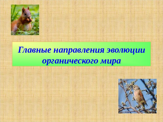 Главные направления эволюции органического мира