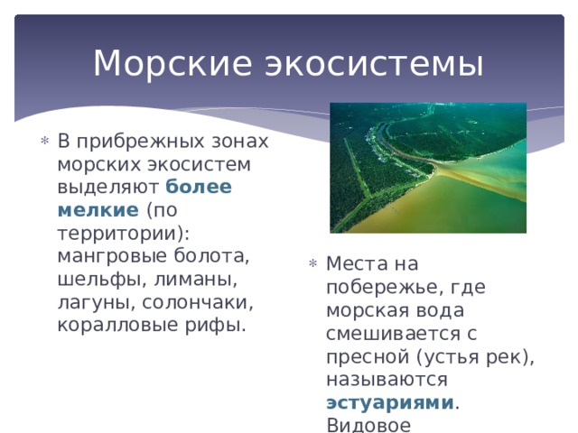 Морские экосистемы В прибрежных зонах морских экосистем выделяют более мелкие (по территории): мангровые болота, шельфы, лиманы, лагуны, солончаки, коралловые рифы. Места на побережье, где морская вода смешивается с пресной (устья рек), называются эстуариями . Видовое разнообразие здесь достигается максимума.