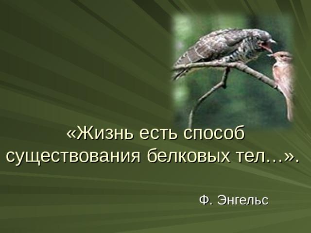 «Жизнь есть способ существования белковых тел…».    Ф. Энгельс