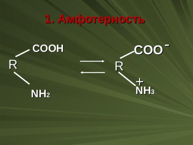 1. Амфотерность - COOH COO R R + NH 3 NH 2