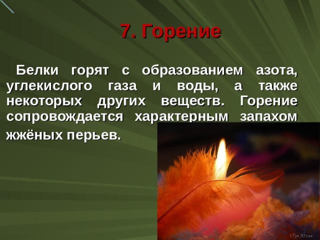 7. Горение Белки горят с образованием азота, углекислого газа и воды, а также некоторых других веществ. Горение сопровождается характерным запахом жжёных перьев.