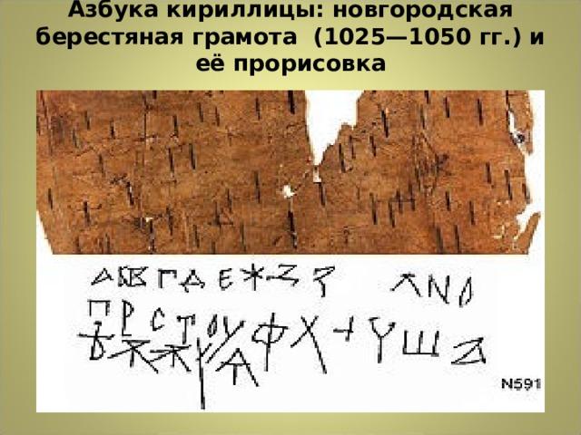 Азбука кириллицы: новгородская берестяная грамота (1025—1050гг.) и её прорисовка