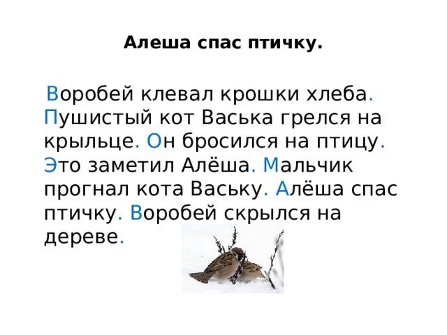 Алеша спас птичку.  В оробей клевал крошки хлеба .  П ушистый кот Васька грелся на крыльце .  О н бросился на птицу . Э то заметил Алёша .  М альчик прогнал кота Ваську .  А лёша спас птичку .  В оробей скрылся на дереве .