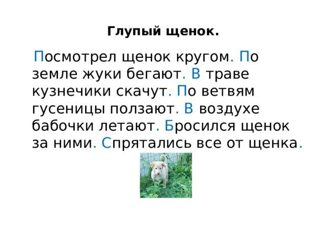 Глупый щенок.  П осмотрел щенок кругом .  П о земле жуки бегают .  В траве кузнечики скачут .  П о ветвям гусеницы ползают . В воздухе бабочки летают . Б росился щенок за ними .  С прятались все от щенка .