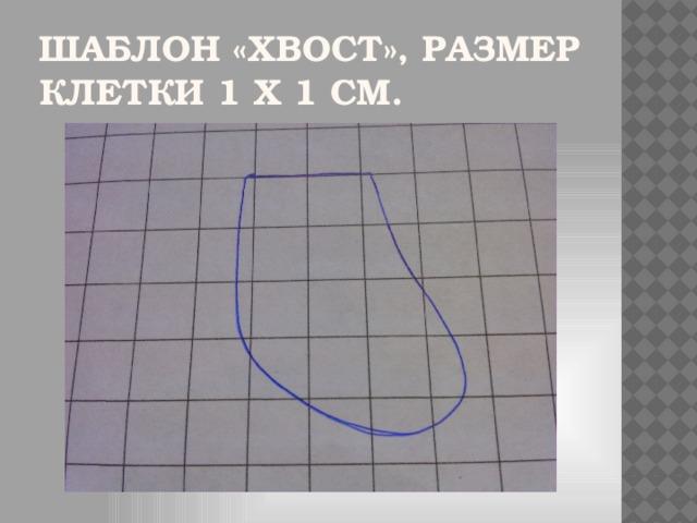 Шаблон «Хвост», размер клетки 1 х 1 см.
