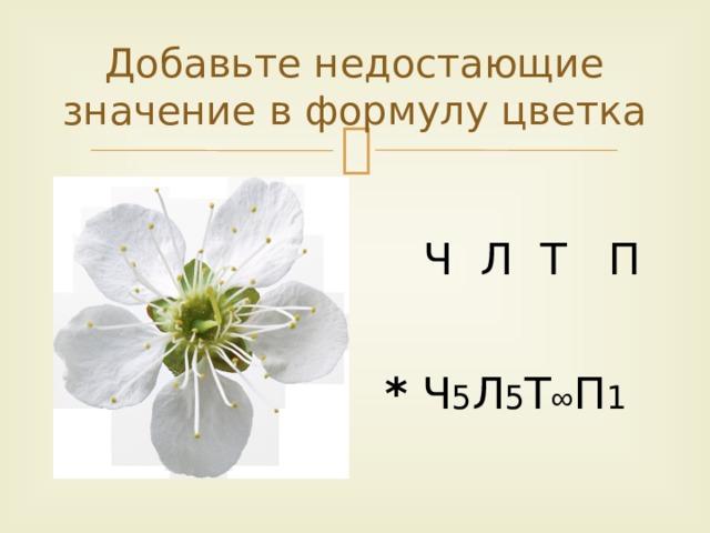 Добавьте недостающие значение в формулу цветка  Ч Л Т П * Ч 5 Л 5 Т ∞ П 1