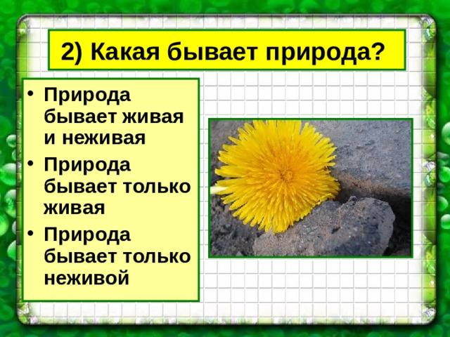 2) Какая бывает природа?  Природа бывает живая и неживая Природа бывает только живая Природа бывает только неживой