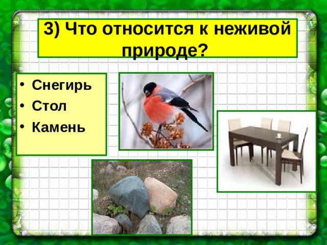 3) Что относится к неживой природе?  Снегирь Стол Камень