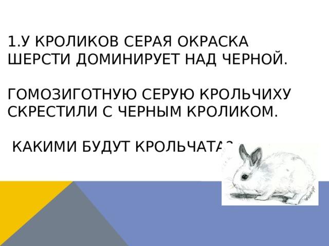 1.У кроликов серая окраска шерсти доминирует над черной.   Гомозиготную серую крольчиху скрестили с черным кроликом.   Какими будут крольчата?