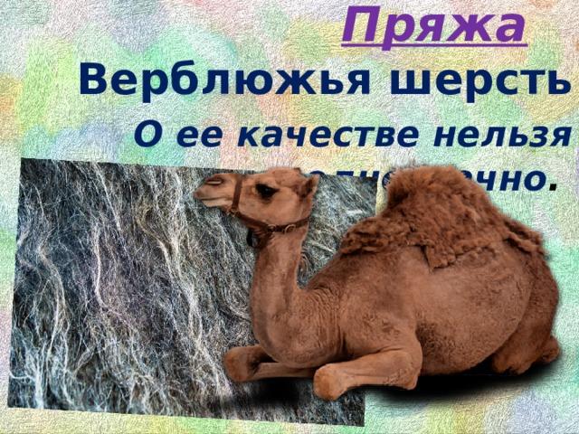 Пряжа  Верблюжьяшерсть   О ее качестве нельзя говорить однозначно .