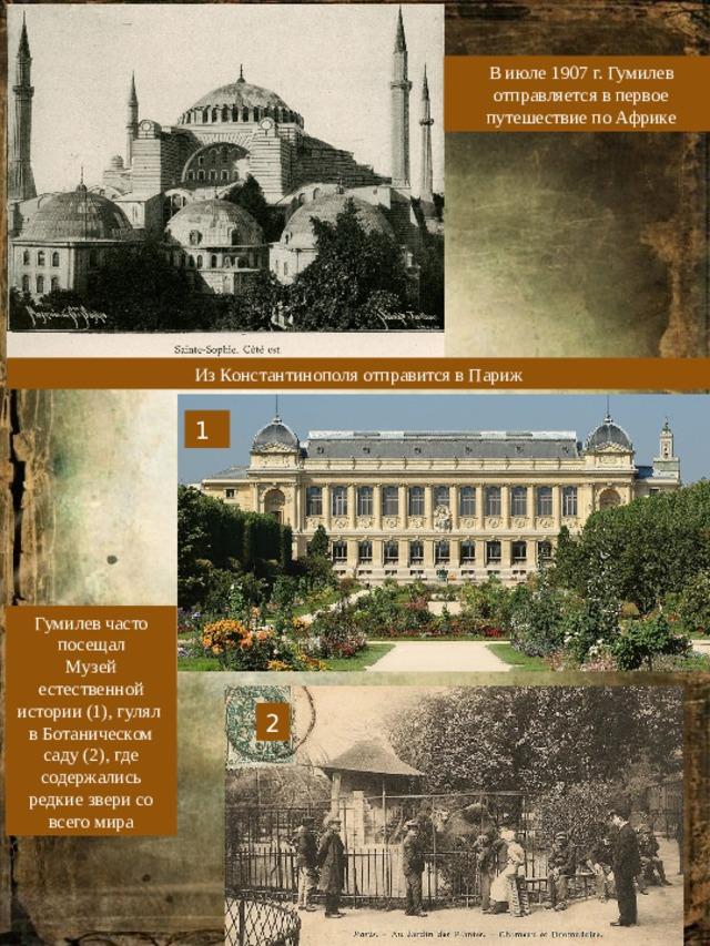 В июле 1907 г. Гумилев отправляется в первое путешествие по Африке Из Константинополя отправится в Париж 1 Гумилев часто посещал Музей естественной истории (1), гулял в Ботаническом саду (2), где содержались редкие звери со всего мира 2