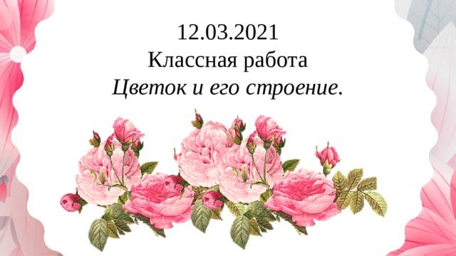 12.03.2021 Классная работа Цветок и его строение.