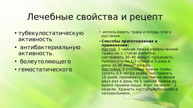 Лечебные свойства и рецепт тубекулостатическую активность  антибактериальную активность.  болеутоляющего гемостатического  использовать траву и плоды этого растения. Способы приготовления и применения:  Настой: 1 чайная ложка измельченной травы на 1 стакан кипятка, настаивать 30-40 минут, процедить. Принимать по 1/3 стакана 3 раза в день за 30 минут до еды.  Настойка: 2 столовых ложки травы залить 0,5 литра водки, настаивать 10 дней, принимать настой не менее двух раз в день по 1 чайной ложке во время приема пищи. Курс лечения – 2 недели. Хранить настой необходимо в холодильнике.