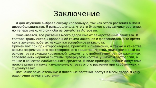 Заключение  Я для изучения выбрала скерду кровельную, так как этого растения в моем дворе большинство. Я раньше думала, что это близкое к одуванчику растение, но теперь знаю, что они оба из семейства Астровые.  Оказывается, все растения моего двора имеют лекарственные свойства. В составе травы скерды кровельной гамма-лактонов и флавоноидов, в то время как в зеленых побегах находится аскорбиновая кислота.  Применяют при при атеросклерозе, бронхите и пневмонии, а также в качестве весьма эффективного противорвотного средства. Настой, приготовленный на основе травы скерды кровельной, следует употреблять внутрь при различных заболеваниях нервной системы, туберкулезе костей, ушибах и гастралгии, а также в качестве слабительного средства. В виде припарок вполне допустимо прикладывать к коже измельченную траву этого растения при карбункулах и фурункулезах.   Вот какие замечательные и полезные растения растут в моем дворе. я хочу еще лучше изучать растения.