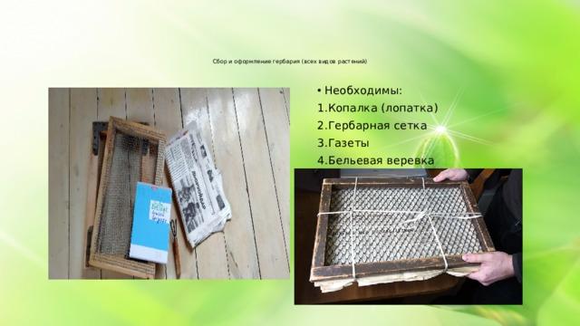 Сбор и оформление гербария (всех видов растений)    Необходимы: Копалка (лопатка) Гербарная сетка Газеты Бельевая веревка