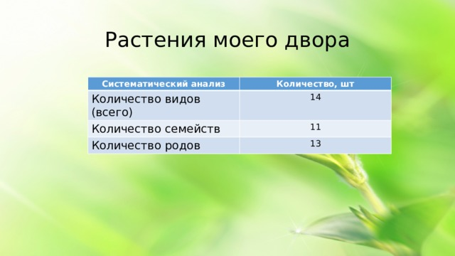 Растения моего двора Систематический анализ Количество, шт Количество видов (всего) 14 Количество семейств 11 Количество родов 13