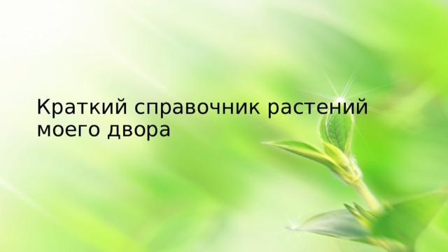 Краткий справочник растений моего двора