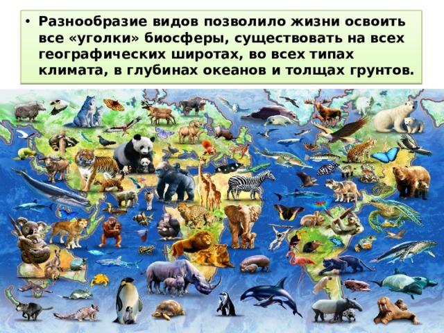 Разнообразие видов позволило жизни освоить все «уголки» биосферы, существовать на всех географических широтах, во всех типах климата, в глубинах океанов и толщах грунтов.