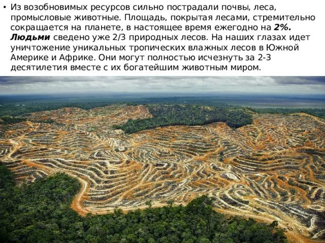 Из возобновимых ресурсов сильно пострадали почвы, леса, промысловые животные. Площадь, покрытая лесами, стремительно сокращается на планете, в настоящее время ежегодно на 2%. Людьми сведено уже 2/3 природных лесов. На наших глазах идет уничтожение уникальных тропических влажных лесов в Южной Америке и Африке. Они могут полностью исчезнуть за 2-3 десятилетия вместе с их богатейшим животным миром.