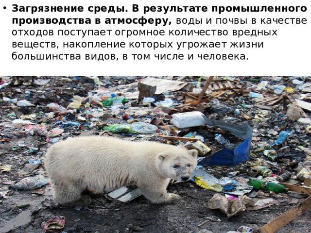 Загрязнение среды. В результате промышленного производства в атмосферу, воды и почвы в качестве отходов поступает огромное количество вредных веществ, накопление которых угрожает жизни большинства видов, в том числе и человека.