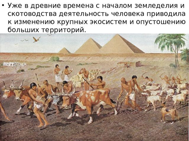 Уже в древние времена с началом земледелия и скотоводства деятельность человека приводила к изменению крупных экосистем и опустошению больших территорий.