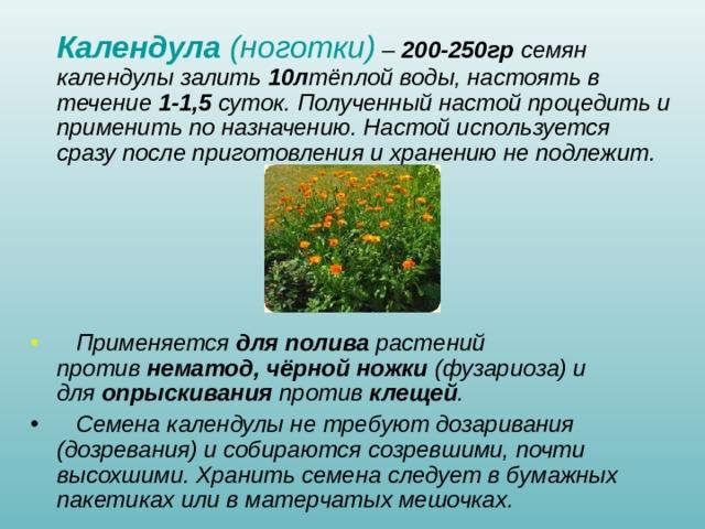 Календула (ноготки) – 200-250гр семян календулы залить 10л тёплой воды, настоять в течение 1-1,5 суток. Полученный настой процедить и применить по назначению. Настой используется сразу после приготовления и хранению не подлежит.       Применяется для полива растений против нематод, чёрной ножки (фузариоза) и для опрыскивания против клещей .  Семена календулы не требуют дозаривания (дозревания) и собираются созревшими, почти высохшими. Хранить семена следует в бумажных пакетиках или в матерчатых мешочках.
