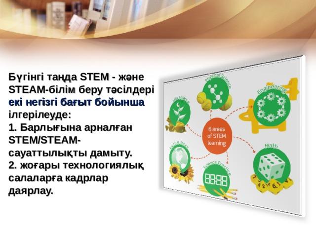 Бүгінгі таңда STEM - және STEAM- білім беру тәсілдері екі негізгі бағыт бойынша ілгерілеуде: 1. Барлығына арналған STEM/STEAM- сауаттылықты дамыту. 2. жоғары технологиялық салаларға кадрлар даярлау.