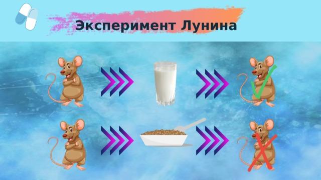 Эксперимент Лунина