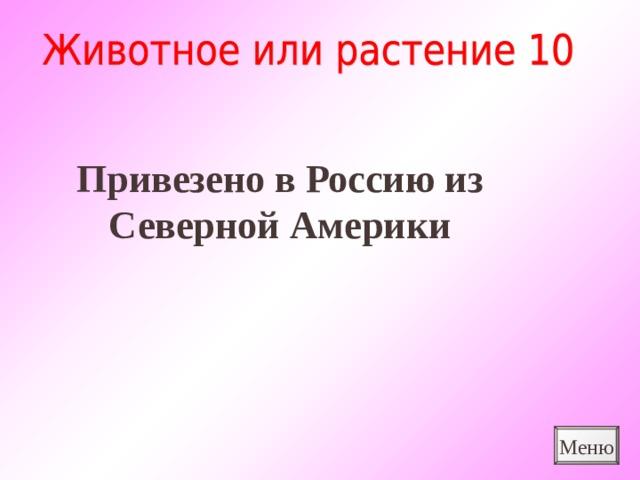 Привезено в Россию из Северной Америки Меню